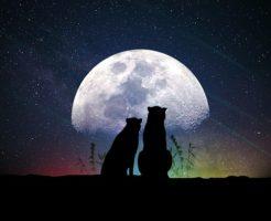 moon-3349964_640
